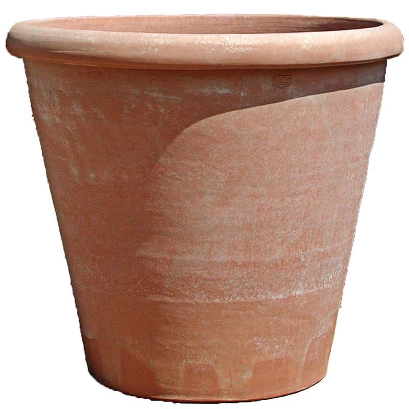 003-vaso-camelia